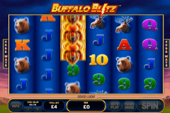 buffalo blitz playtech pokie