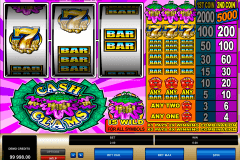 cash clams microgaming pokie