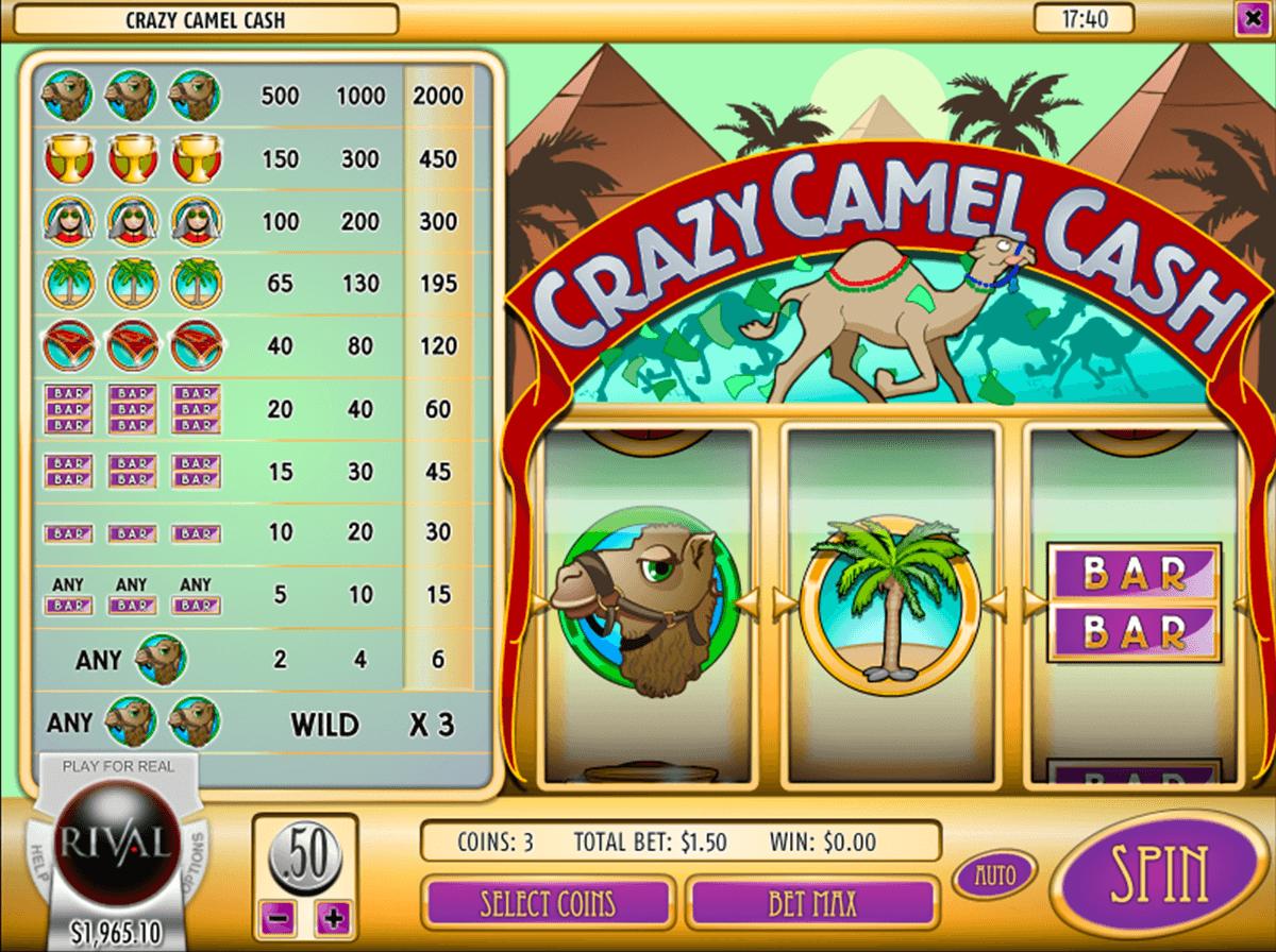 crazy camel cash rival pokie