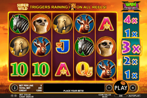 hot safari pragmatic pokie