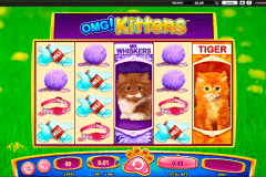 omg kittens wms pokie