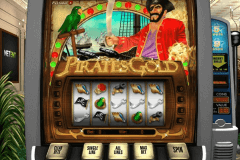 pirates gold netent pokie