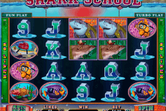 shark school rtg pokie