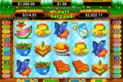 small fortune rtg pokie