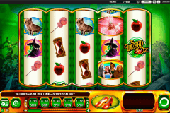 the wizard of oz ruby slippers wms pokie