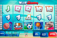 wild games playtech pokie